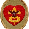 Badge for Life Boy Scout Rank