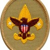 Boy Scout Tenderfoot Badge