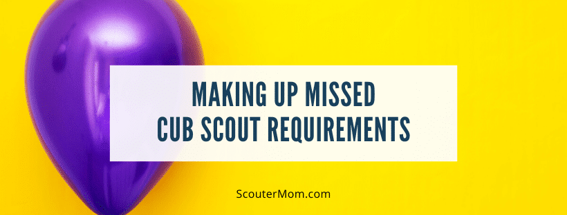 Making Up Missed Cub Scout Requirements