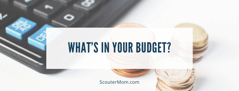 What's In Your Budget