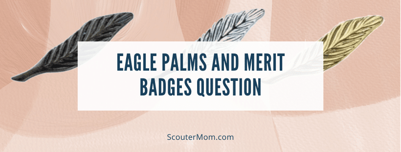 Eagle Palms and Merit Badges Question