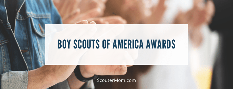 Boy Scouts of America Awards