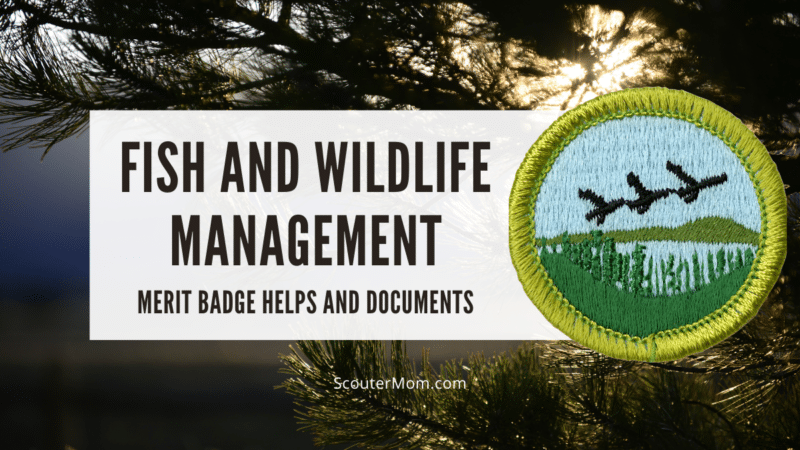An image of the Fish and Wildlife Management merit badge emblem over a photo of a beautiful wilderness area.