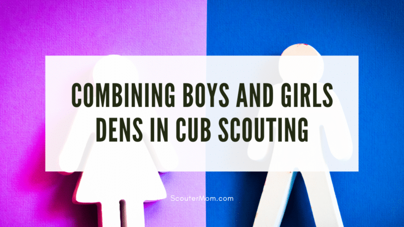 A woman icon over a pink background and a man icon over a blue background to represent the question of combining boys and girls dens in Cub Scouting.