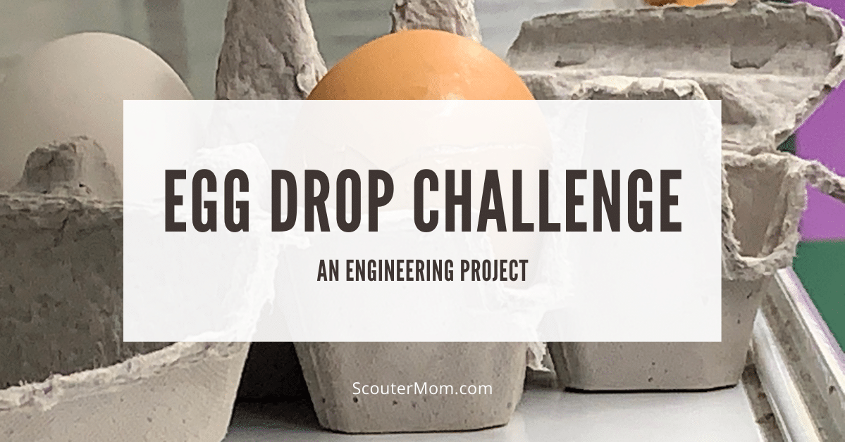 Egg Drop Challenge An Engineering Project