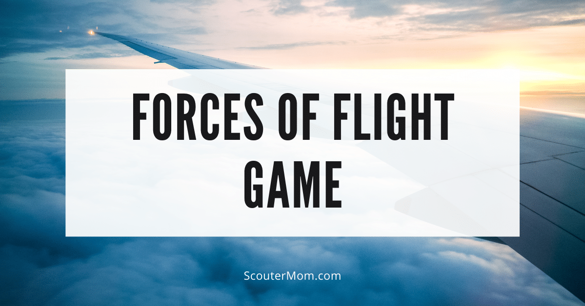Forces of Flight Game