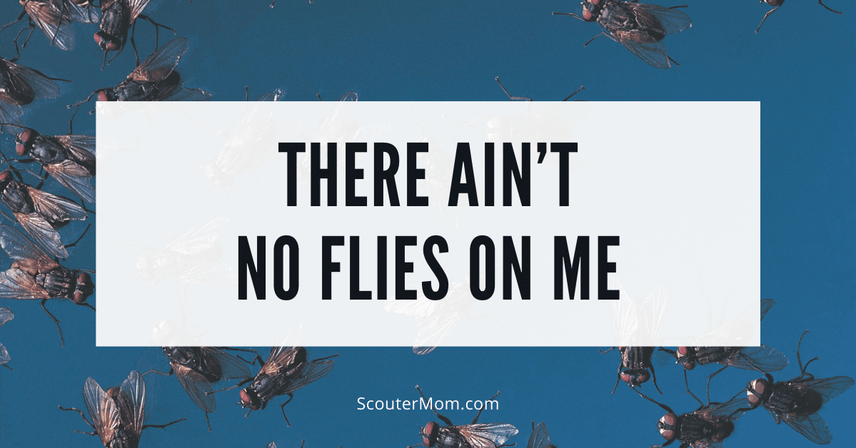 There Aint No Flies on Me