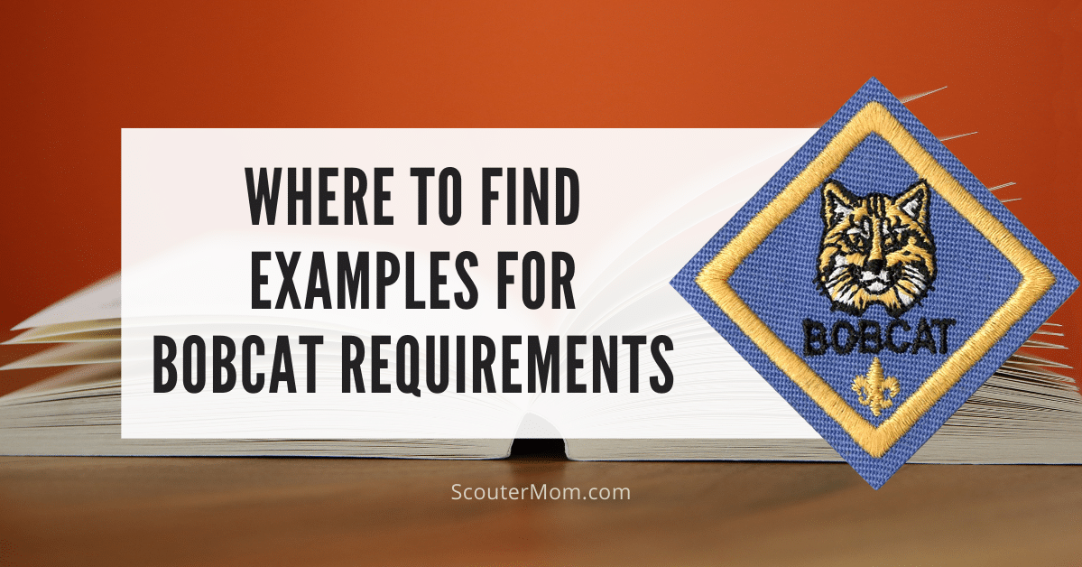 Where to Find Examples for Bobcat Requirements