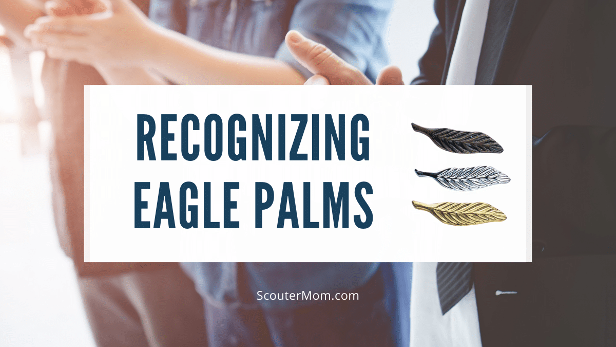 Recognizing Eagle Palms emphasizes that youth can continue to be active after achieving Eagle Scout.