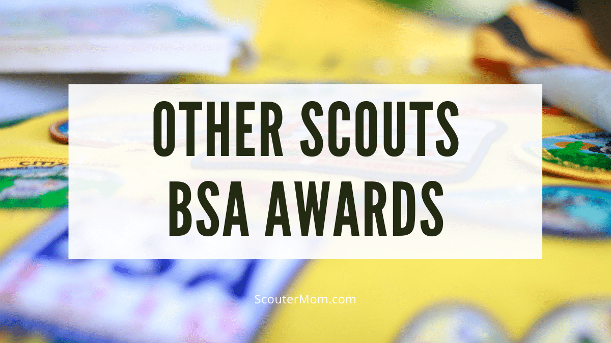 other scout awards