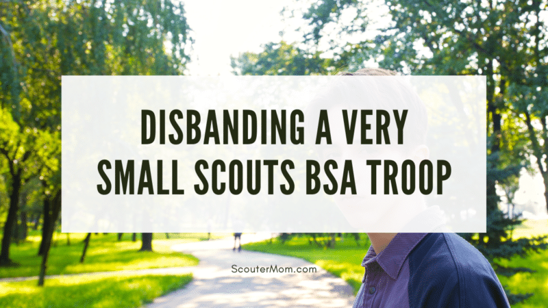The title about a small Scout troop over an image of a young man with a path before him, symbolizing the decision which needs to be made about the Scouts BSA troop.