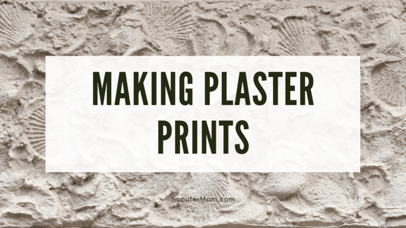 The title Making Plaster Prints over an images of shell prints, indicating one of the many types of prints which can be made.