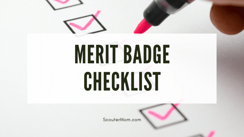 A list with checkboxes, indicating that this is a merit badge checkoff list.