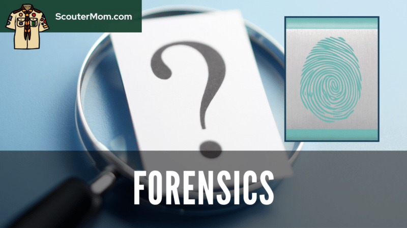 An image of a magnifying glass and a question mark with the Bear Forensics Adventure beltloop.