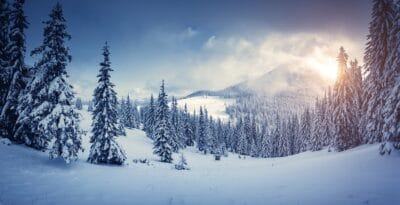 Awesome winter landscape with snow