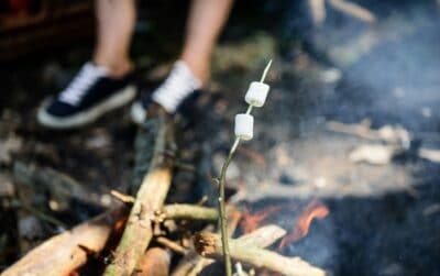Camp Tradition Marshmallows On a stick