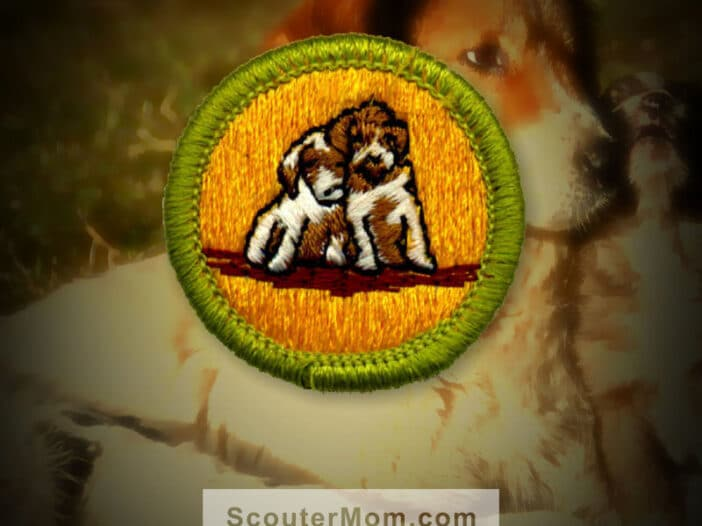 Dog Care Merit Badge for Boy Scouts