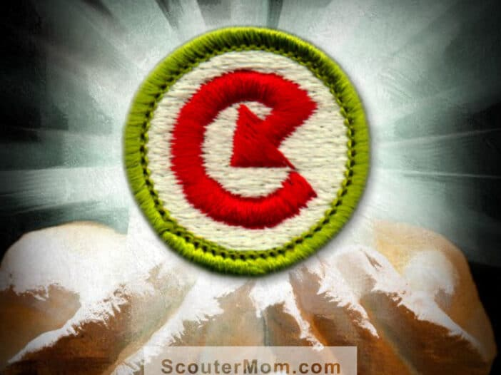 Energy Merit Badge for Boy Scouts