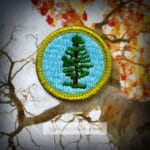 Forestry Merit Badge for Boy Scouts