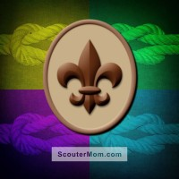 Scout Badge Boy Scout