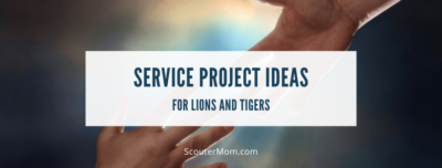 Service Project Ideas for Lions Tigers Cub Scouts