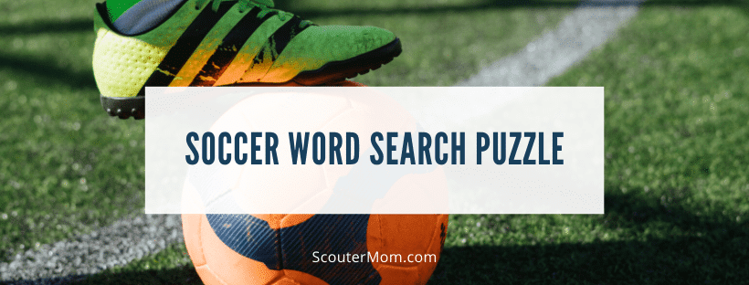 Soccer Word Search Puzzle